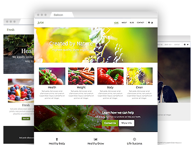 An assortment of easy to re–design website templates